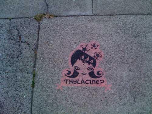 070809_thylacine-500