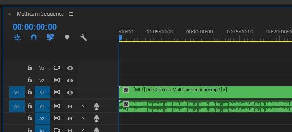 Transcribing multicam in Adobe premiere pro